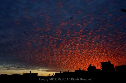 夕日の画像 01