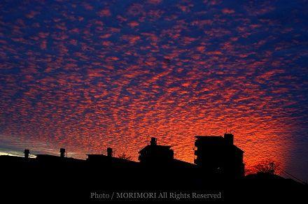 夕日の画像 02